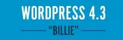 Wordpress4.3Billie