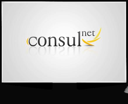 Logo Entwicklung für consul net