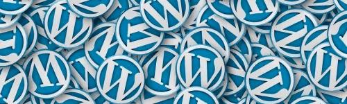 Update für mit WordPress erstellte Webseite